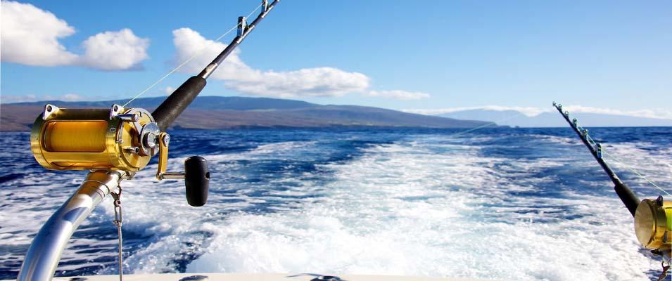 وسایل مورد نیاز برای صید ماهی در جزیره کیش