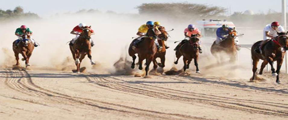 دسترسی های باشگاه اسب سواری کیش