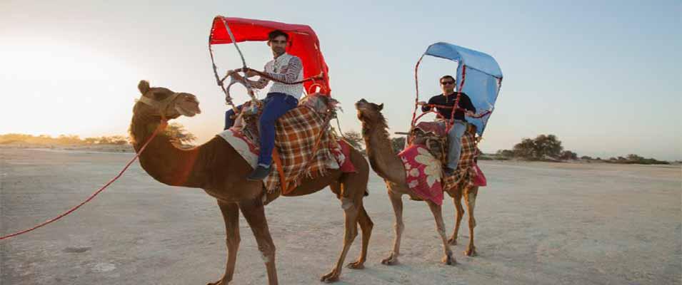 برای شتر سواری در کیش به کجا باید برویم؟
